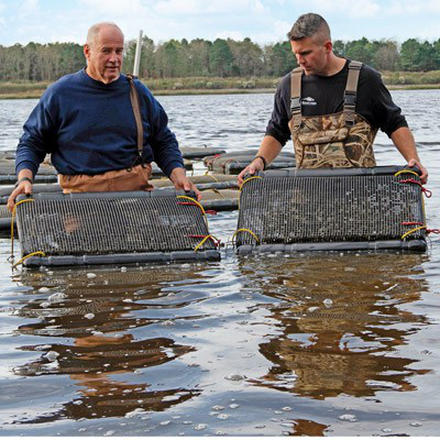 Aquaculture scientists standing in water