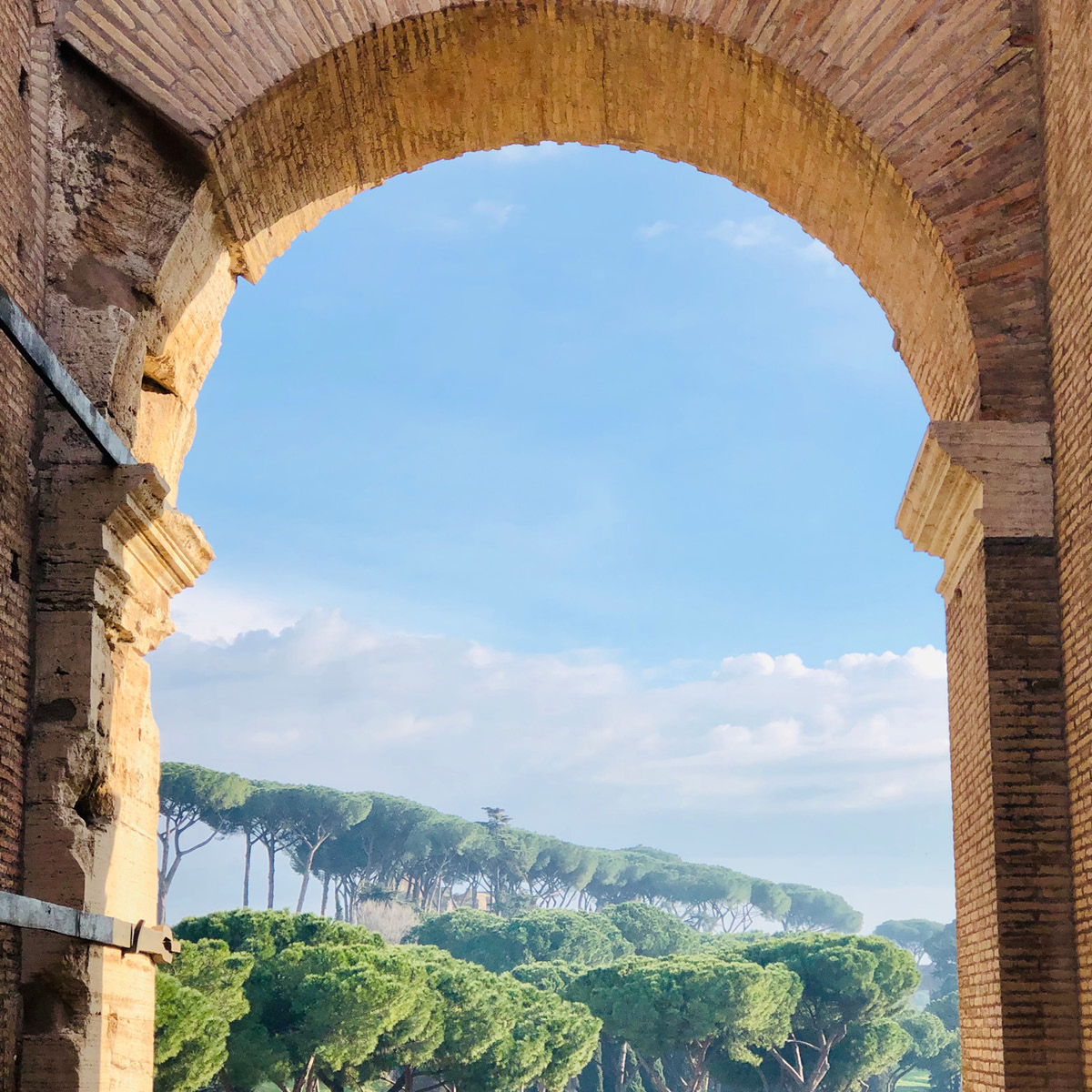 A view from inside the colosseum showing an archway and the trees outside.